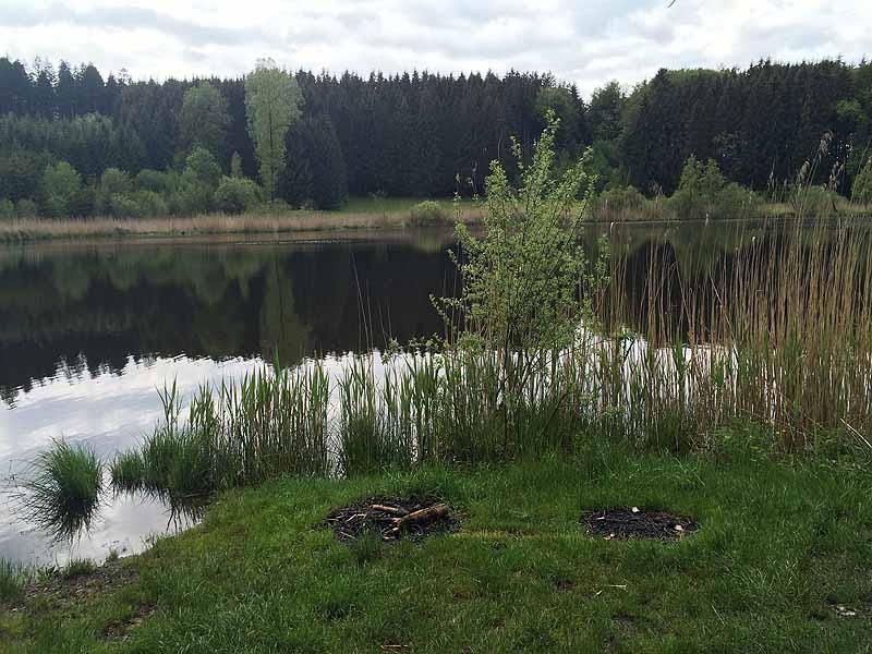 FKK in Wangen: Elitzer See - Impressionen